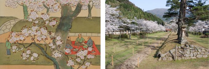No. 39 Cherry blossoms at Washibara Hachimangu Shrine